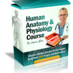 human anatomy physiology online course